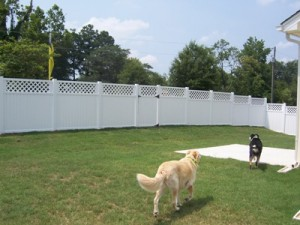 vinyl fence wilmington NC